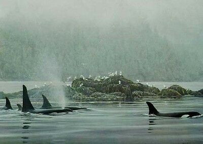 Robert Bateman ORCA PROCESSION Killer Whales, Lg giclee canvas ARTIST PROOF AP#2