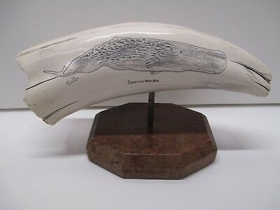 1 Cook Company Scrimshaw Resin Sculpture SPERM Whale w/ tags