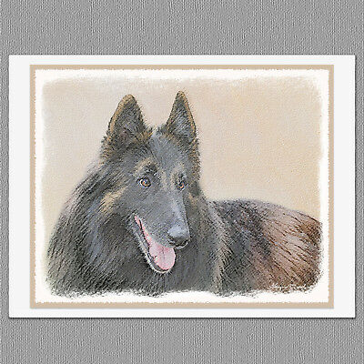 6 Belgian Tervuren Dog Blank Art Note Greeting Cards