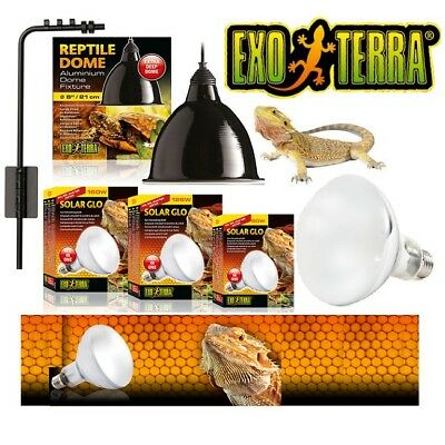 Exo Terra Solar Glo Mercury Vapour Heat Bulb Dome Lamp Holder Bracket UV UVB UVB