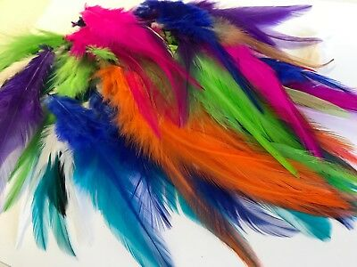 Bulk 100 Random Mixed Colour Rooster Feathers 9-15cm DIY Art Craft Dream Catcher