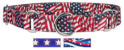 Country Brook Petz® Martingale Dog Collar - American Pride Collection