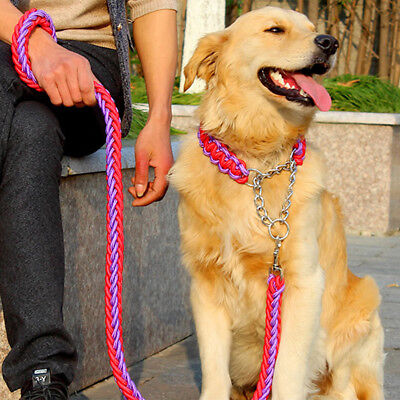 1x Chien Chiot Chat Animal Corde Marche Traction Collier Nylon Laisse Sangle NF