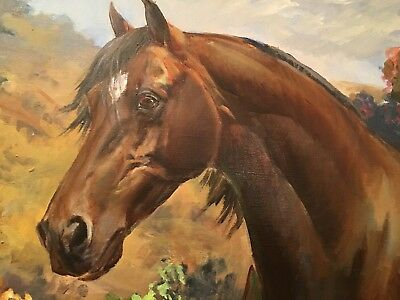 Paso Fino Stallion Original Oil Painting by Marilyn Todd Daniels