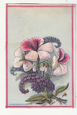 E B Duval Litho Purple White Pink Flowers No Advertising Vict Card c 1880s