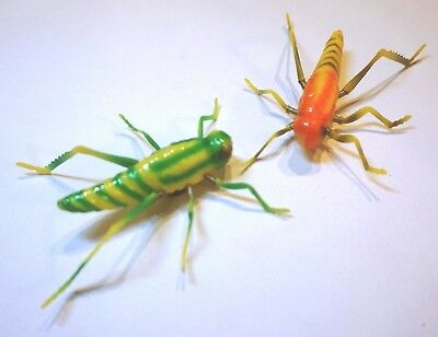 Locust Insect 3D Moving Fridge Magnets Ideal Note/memo/shopping List Holder