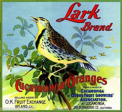 Cucamonga San Bernardino Upland Lark Bird Orange Citrus Fruit Crate Label Print