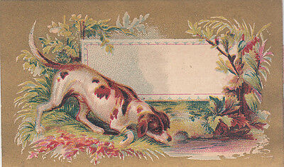 White & Brown Spaniel Hunting Dog Stream  No Advertising Vict Card c 1880s