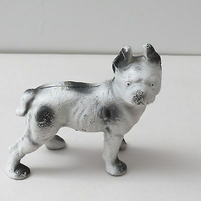 Cast Iron Dog Bank - Boston Terrier ? 5 1/2 Inches High - No Marks