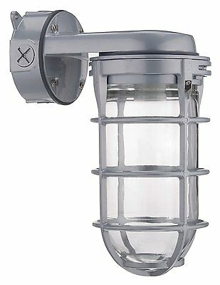 Outdoor Weatherproof Industrial Wall Mount Light Metal Cage Bulb Protector Gray