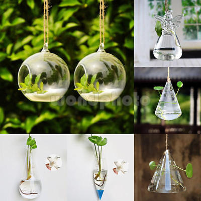 Wall Hanging Glass Planter Air Plant Terrarium Flower Art Pots Vase Home Decor