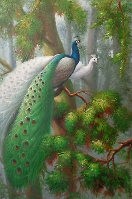 "High Quality Oil Painting on Stretched Canvas ""Stunning Peacocks on Tree"" 24x36"""
