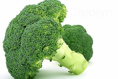 "50 Seeds of "" Green Sprouting Broccoli "" Brassica Oleracea, Green Flower"