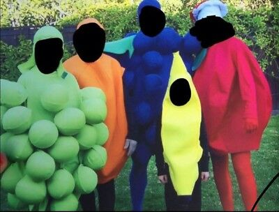 Lot Of 5 Family Fruit Of A Loom Halloween Costume Set
