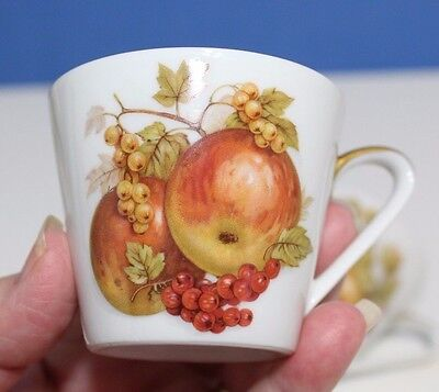 Bavaria Jaeger Co. Germany Orchard Demitasse Tea Cups with Gold Trims