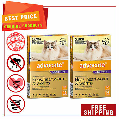 ADVOCATE PURPLE for Cats Over 4 Kg 12 Pipettes + EXTRA 4 Pipettes AU Stock