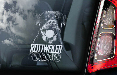 Rottweiler on Board - Car Window Sticker - Rottie Beware of Dog Sign Decal - V06