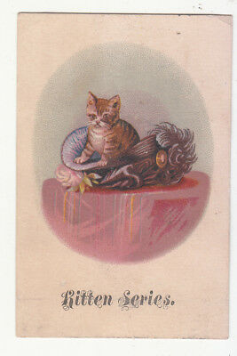 Kitten Series Cat in a Plumed Purple Hat Table No Advertising Vict Card c1880s