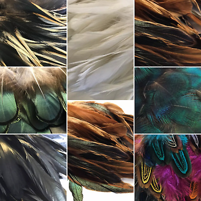 Bulk 50 Rooster or Pheasant feathers 10 Choices Millinery Hat DIY Art Craft