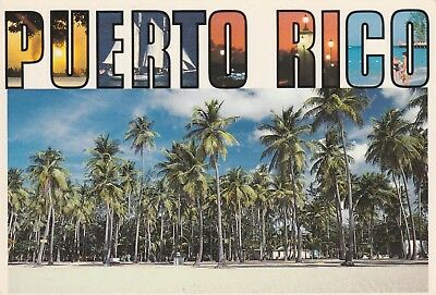 Greetings from puerto rico roadside fruitstand 1975 cancel puerto rico postcard greetings from puerto rico beautiful view m4hsunfo
