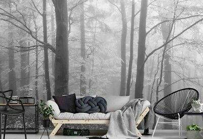 Autumn Morning in the Fog (Black and White) 12' x 8' (3,66m x 2,44m)-Wall Mural
