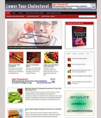 Lower Cholesterol Advice Blog & Affiliate Website With Store And Banners
