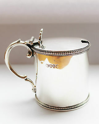 Solid Silver Victorian Mustard Pot London 1880