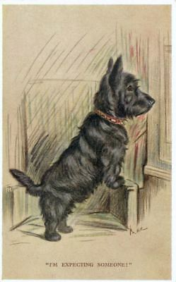 Old Postcard Scottie Terrier Dog Signed Mac 1932 England Valentine's Tailwagger