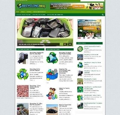Recycling Website / Wordpress Blog With Uk Affiliate Store + New Free Domain