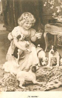 Rare Old Dog Sepia Postcard PC Jack Russell Fox Terrier Too Hot Netherlands 1910
