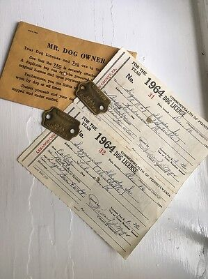 Pair Of Vintage 1964 Lebanon County PA Brass Dog Tag License W Documentation