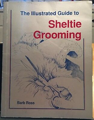 The Illustrated Guide to Sheltie Grooming