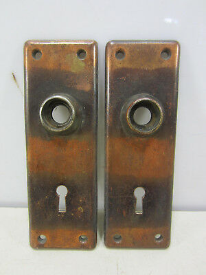 2 Antique Endfield Japanned Brass Door Backplates