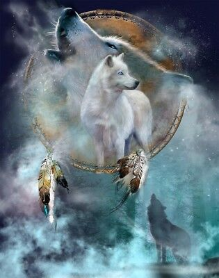 Native American Dreams Of The White Wolf Beautiful Borderless 8.5x11 Matte Art