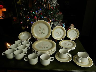 27 Pcs Impressions By Daniele Imported Stoneware Country Day  Dinnerware Japan