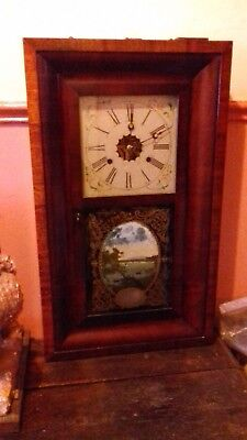 ANTIQUE American ' Forestville Clock Company'  OG Shelf Clock