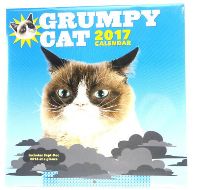 "Grumpy Cat 2017 Wall Calendar 12""x12"" Factory Sealed Free Shipping"