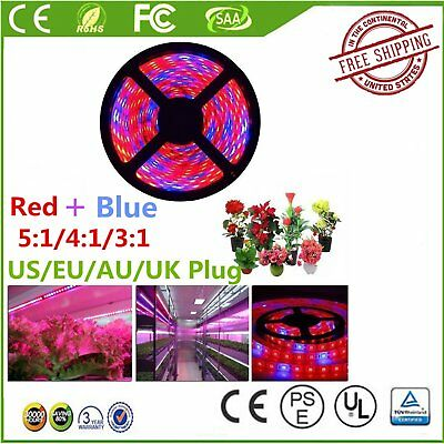 5M Red Blue SMD 5050 LED Strip Grow Light Lamp Full Spectrum For Plant LG