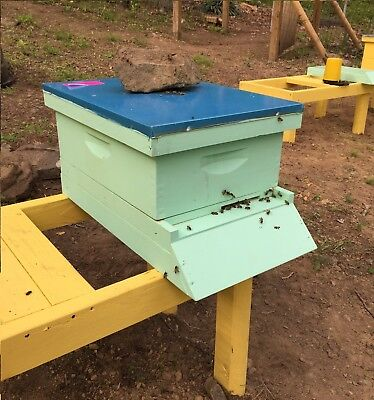 JULY Pre-Sale $360 Complete Bee Hive with live Bees & Queen. DEPOSIT $50.