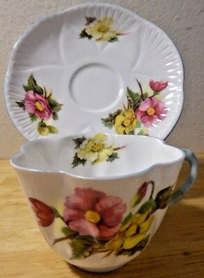 Shelley Cup and Saucer: Begonia Floral Green Label