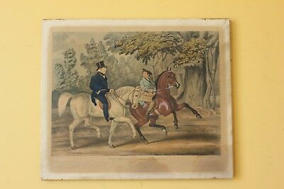 Antique, Early 1800's, Horse print. Hand coloured.
