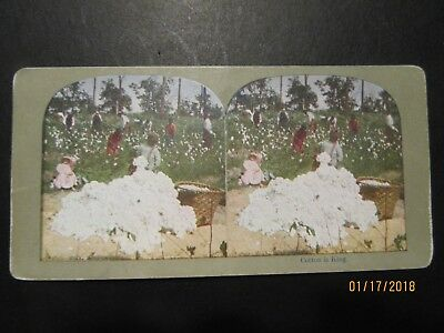 Antique Vintage Black Americana Stereoview Photpgraph 1900's