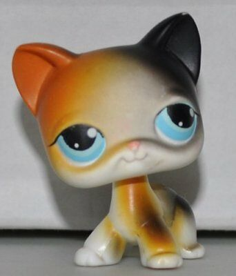 Littlest Pet Shop cat rare short hair Kitty LPS Toys 106 with Yellow-black ears
