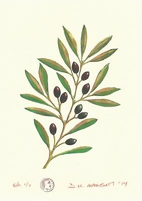 "Dimitris C. Milionis  ""OLIVE BRANCH""   E.A. 1/1 Edition Giclee Print Greece 2014"