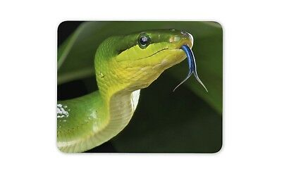 Awesome Green Snake Mouse Mat Pad - Reptile Snakes Fun Gift PC Computer #8313