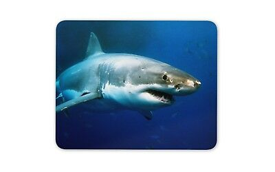 Awesome Great White Shark Mouse Mat Pad - Surf Diving Fun Gift PC Computer #8314
