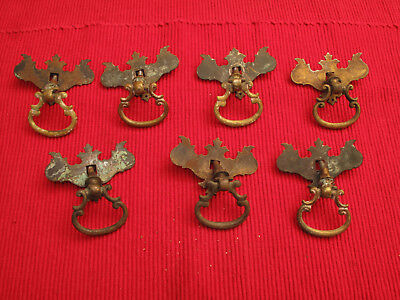 """Set Of 7 Brass Antique Chippendale Batwing Drop Dangle Drawer Pulls Knobs 2.5"""" W"""