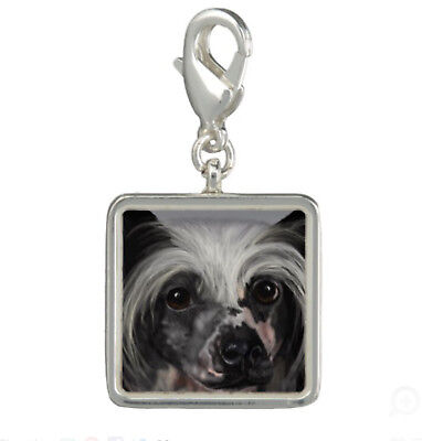 Charm - Chinese Crested