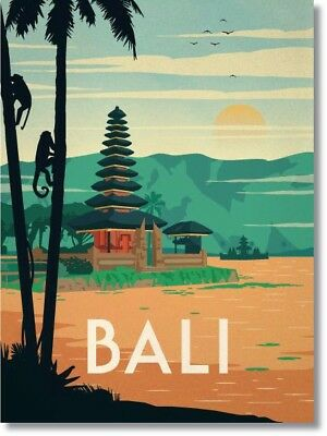 Vintage BALI INDONESIA Photo Fridge Magnet New