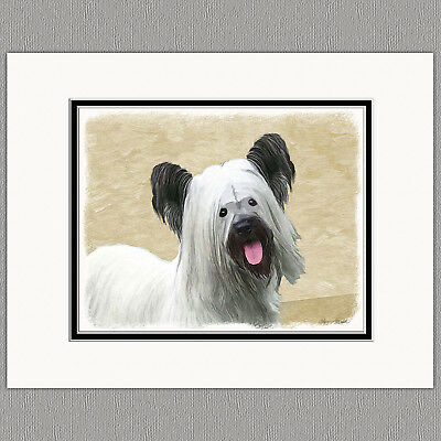 Skye Terrier Dog Original Art Print 8x10 Matted to 11x14